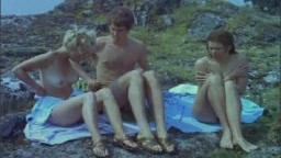 One swedish summer 1968